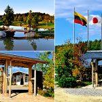 Japoniškas sodas 010