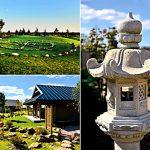 Japoniškas sodas 06