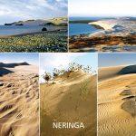 Neringa 51