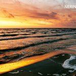 Neringa 64