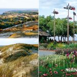 Neringa 70