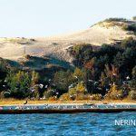 Neringa 33