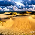 Neringa 019