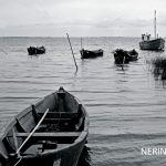 Neringa 041