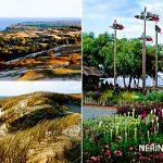 Neringa 070