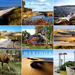 Neringa 077
