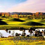 Japoniškas sodas 001