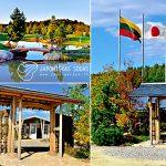 Japoniškas sodas 07